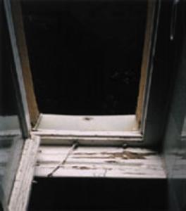 mold removal minneapolis mn