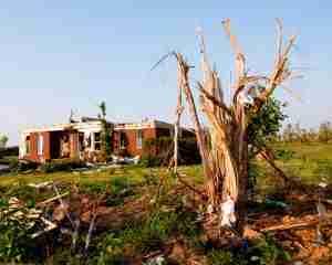 storm damage cleanup St Paul