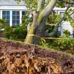 storm damage cleanup, storm damage repair