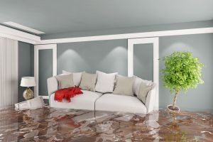 water damage minneapolis, water damage cleanup minneapolis, water damage restoration minneapolis
